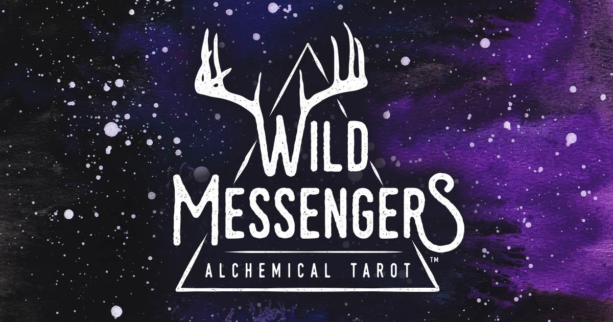 wild-messengers-fb-seo-graphic